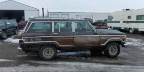 1979 Jeep Wagoneer For Sale In Darwin Minneapolis Minnesota