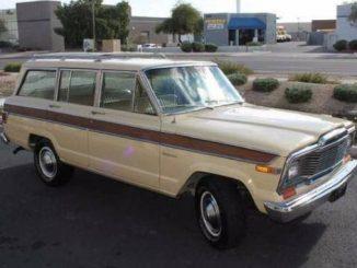 1979 Jeep Wagoneer For Sale - SJ USA Classifieds ...